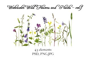 Watercolor Flowers and Plants vol.1