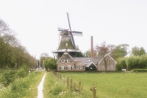 Dutch landscape with mill