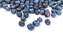 Fresh blueberries fruits