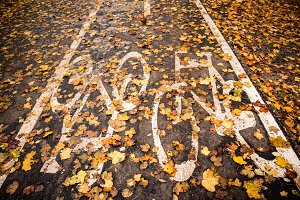 Bike path in the autumn