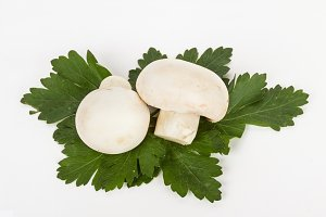 White mushrooms champignon