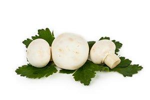 White mushrooms champignon