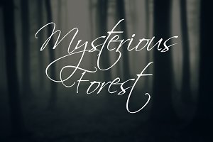 Mysterious Forest Megapack