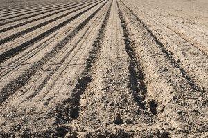 Plowed land.