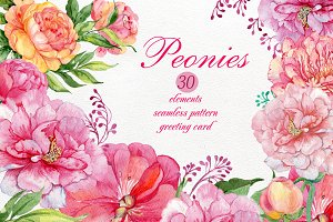 watercolor clipart /flowers peonies