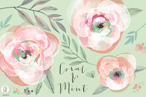 Watercolor coral mint roses
