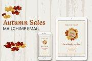 Autumn Sales Mailchimp Eblast