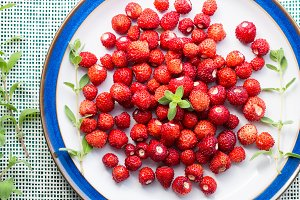 Wild strawberries on a plate. Banner