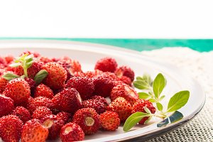 Wild strawberries in a plate on green table