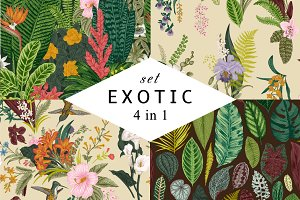 Exotic patterns. Set. Colorful