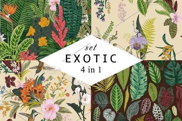 Exotic patterns. Set. Colorful - Patterns