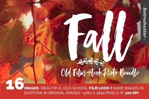 Fall Film-Look Photo Bundle