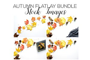 Autumn Flatlay Stock Image Bundle
