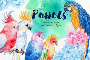 6 birds parrots watercolor