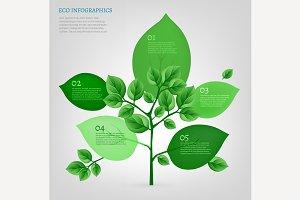 Bio Tree Infographics
