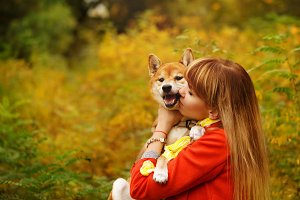 Girl kissing Shiba Inu dog