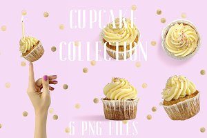 Isolated Cupcake Collection