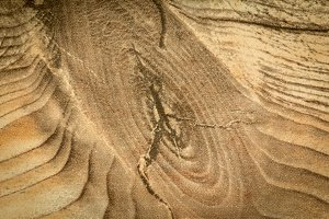 Rustic wood grain for wallpaper
