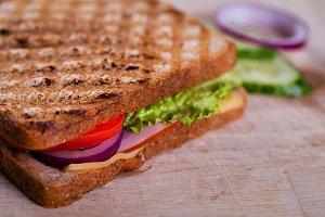 Fresh grilled sandwich