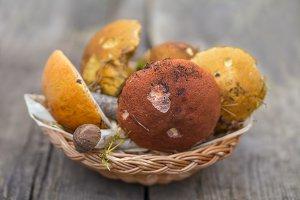 Eatable mushroom