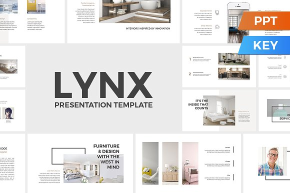 lynx presentation template presentation templates creative market
