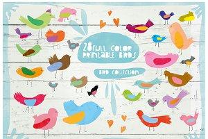 Birds parade Collection