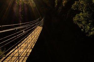 Hanging high II