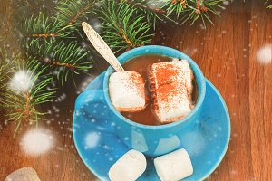 cup of cacao with mashmallows