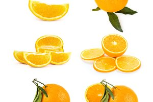 Citrus orange fruits set
