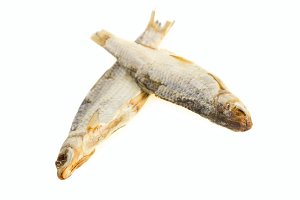 Soft fish
