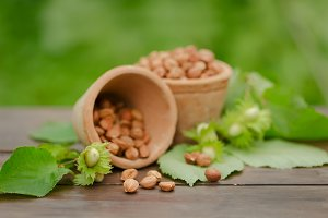 hazelnut on wooden background outdoors