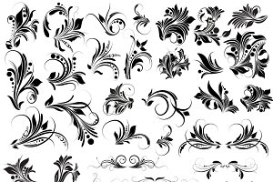 Set - 2 Floral Vector, PNG & Brushes
