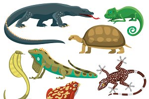 Reptile and amphibian vector set