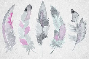 Feather set8