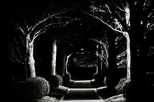Trail at night - Black and White