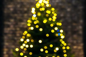 Christmas tree the bokeh effect