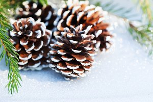 Christmas composition with pine cone