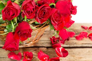 Valentine red roses