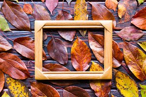 photo frame and leaves
