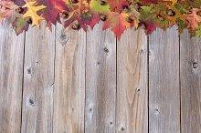Lovely Autumn Leaf Border on wood