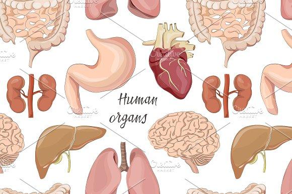 Different Human Organs Set Pattern Patterns Creative Market