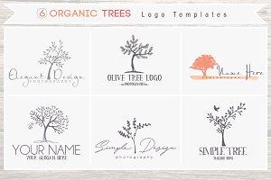 6 Organic Tree Logo Bundle - Sketchy
