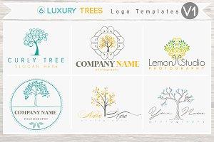 6 Luxury Tree Logo Bundle - Vol 1