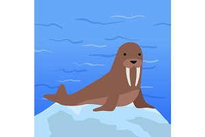 Funny Walrus Illustration