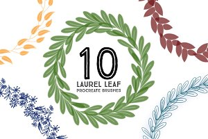 10 Laurel Leaf Procreate Brushes