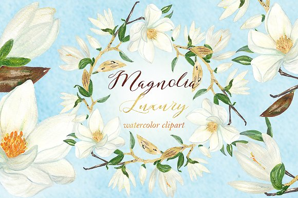 Magnolia white luxury illustrations