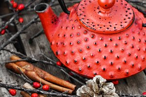 winter tea with cinnamon stick