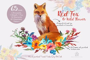 Red Fox and Wild Flowers