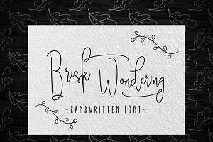 Brisk wondering Handwritten Font