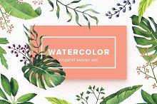 Watercolor Tropical Leaves Set